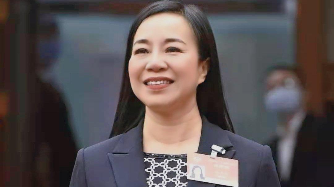 凌友詩:「愛國者治港」保障香港未來發展更好