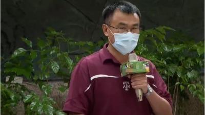 大陸暫停台灣番荔枝和蓮霧輸入 台當局竟稱要向WTO控訴