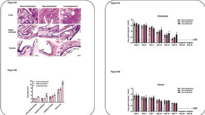 研究揭倉鼠肺出血持續發炎 證低溫加劇新冠散播能力