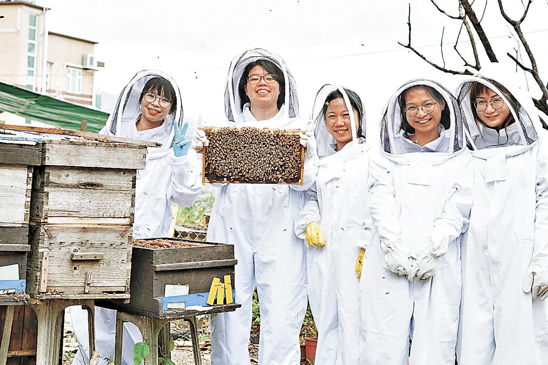 ■參加蜜蜂園導賞團開拓視野。