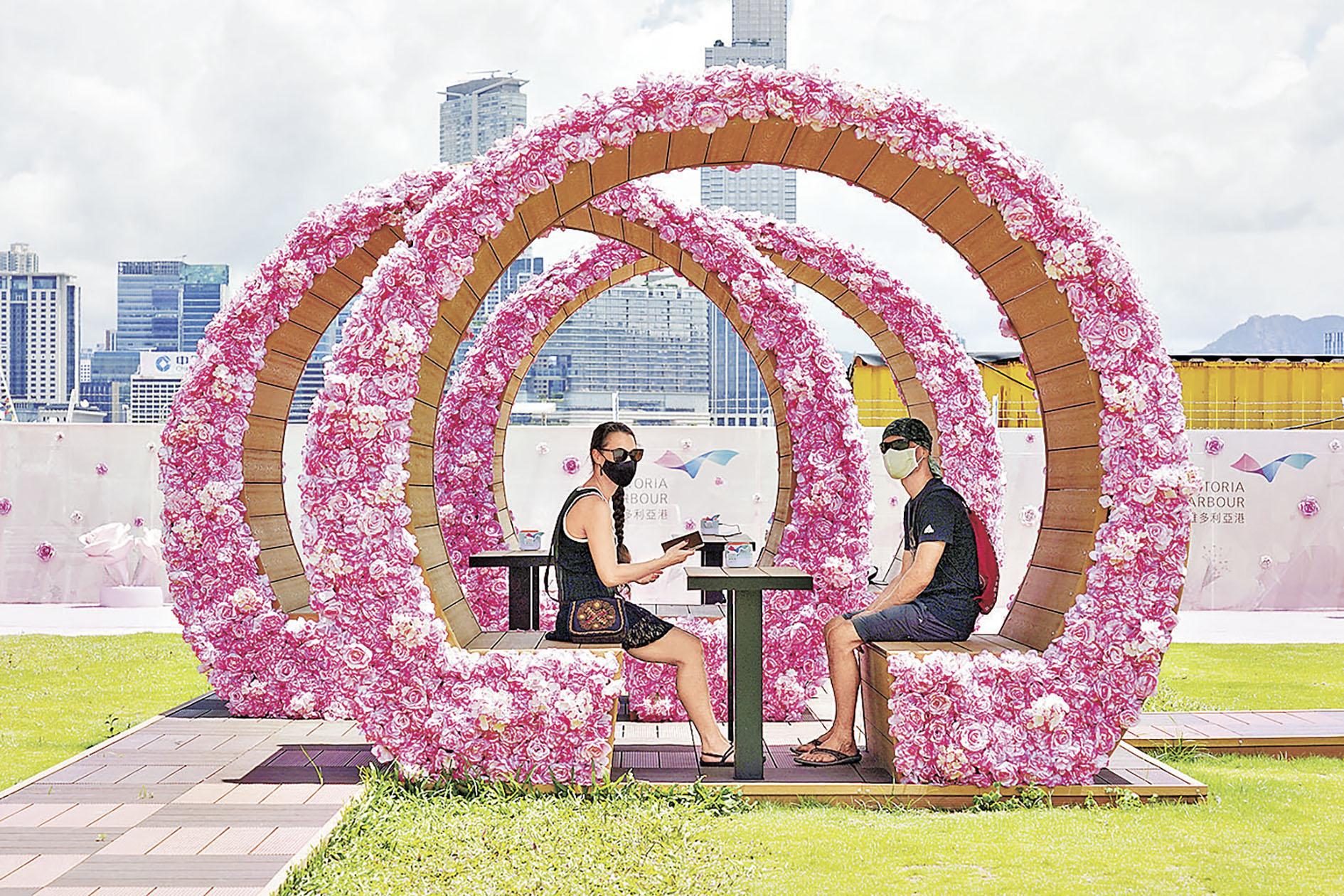 ■粉紅玫瑰拱形蔭棚(灣仔HarbourChill海濱休閒站)
