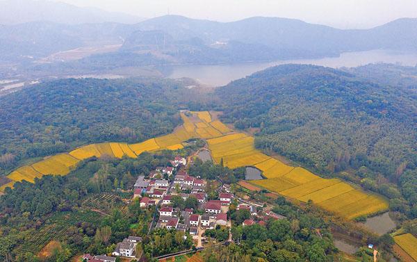 江蘇句容美麗鄉村入畫來